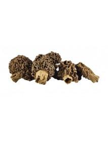 Kuzugöbeği Mantarı Kurusu (100 gr)